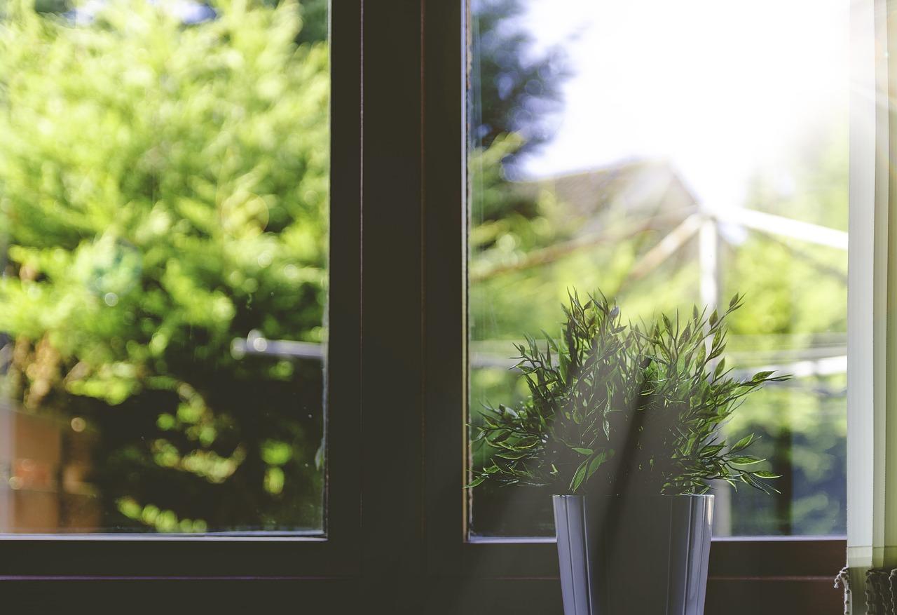 Pourquoi préférer des fenêtres en bois ?