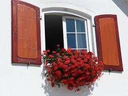 Comment choisir ses nouvelles fenêtres ?